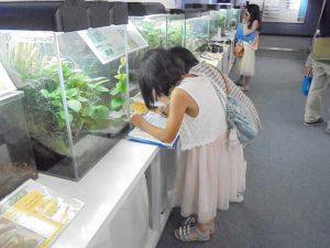 「生き物しりとりクイズ」 @ 水環境館「多目的ホール」 | 北九州市 | 福岡県 | 日本