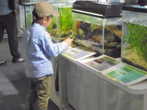 名前クイズ @ 水環境館 | 北九州市 | 福岡県 | 日本