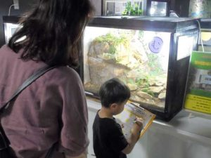 「わくわくクイズ」 @ 水環境館 多目的ホール