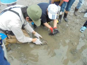 「第52回水辺の生き物講座~奥畑川探検隊~」 @ 水環境館 多目的ホール
