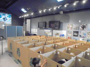 ダンボール迷路でスタンプラリー @ 水環境館 | 北九州市 | 福岡県 | 日本