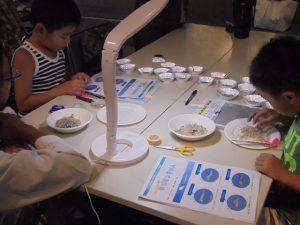 「第55回水辺の生き物講座~チリメンモンスターをさがせ~」 @ 水環境館 | 北九州市 | 福岡県 | 日本
