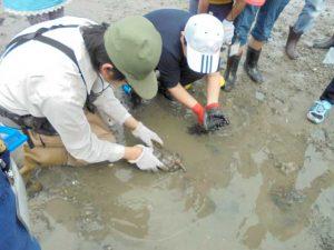 「第56回水辺の生き物講座~奥畑川探検隊~」 @ 水環境館 | 北九州市 | 福岡県 | 日本